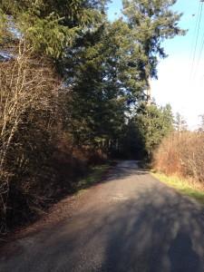 Walking trail IMG_0670
